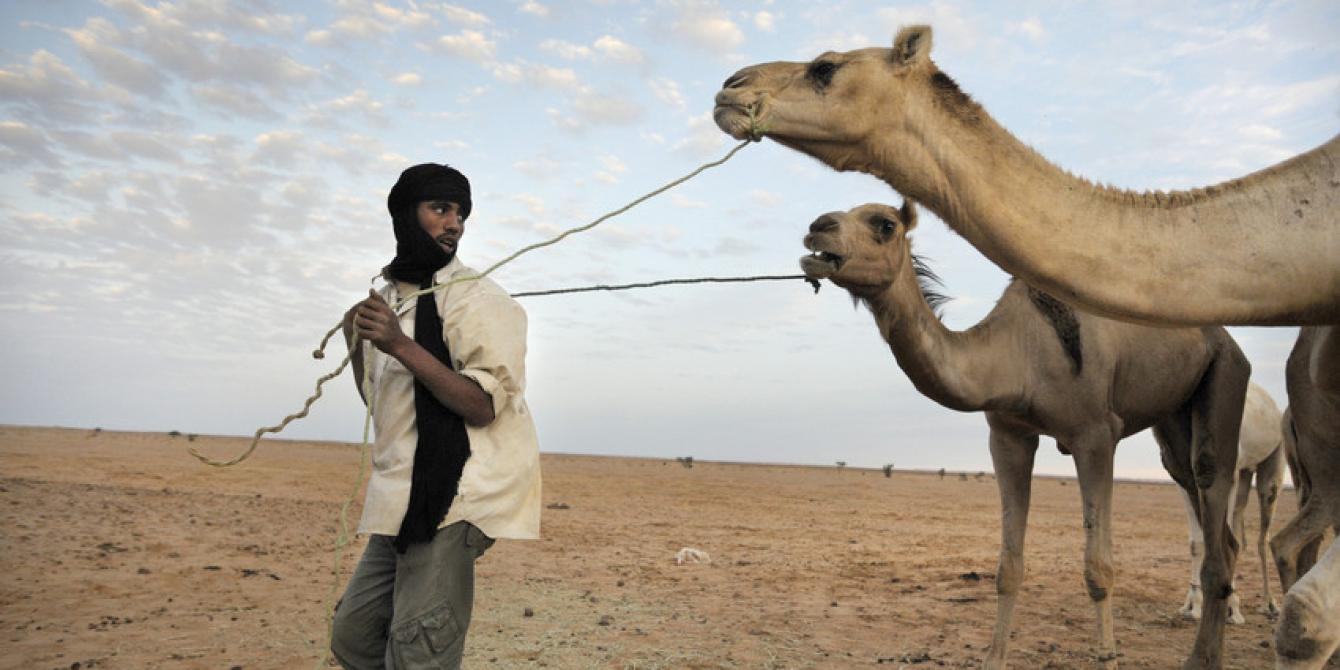 أوكسفام الصحراء الغربية