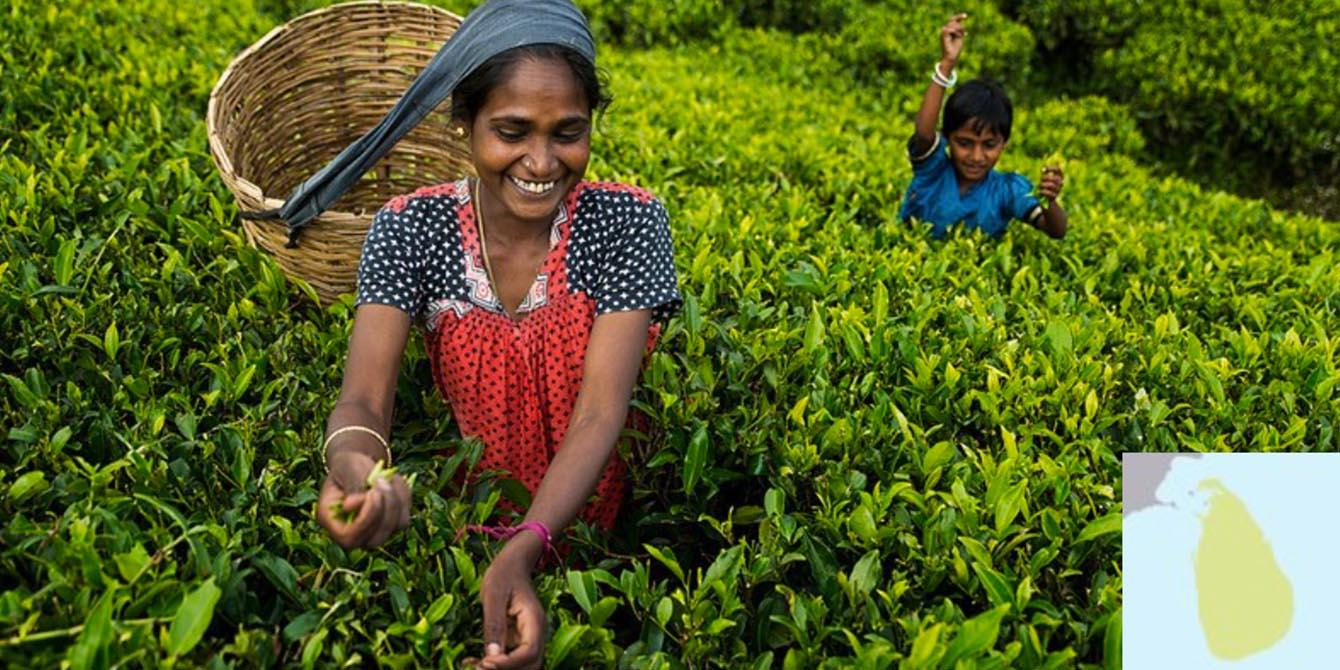 Oxfam's Resilience Work in Sri Lanka