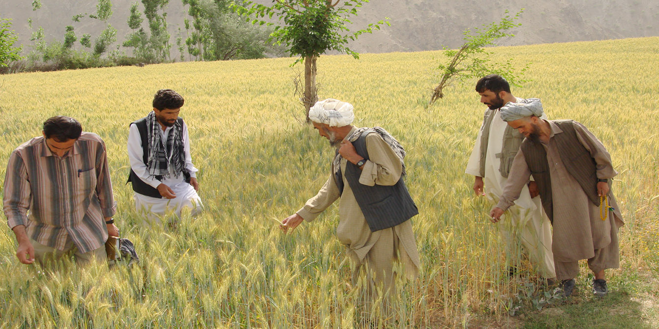 Oxfam in Asia - Afghanistan - Economic Justice