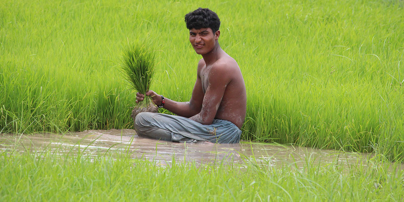 Oxfam in Asia - Pakistan - Campaigns on Climate Change Food Security and Livelihoods
