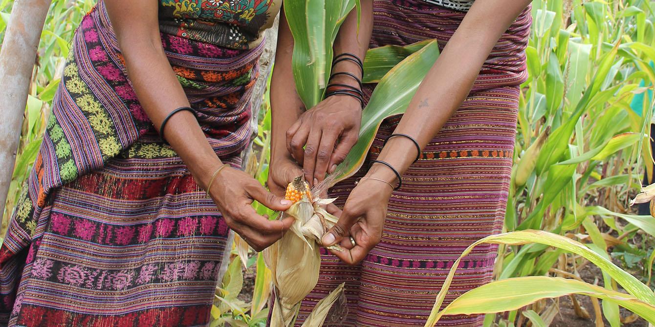 Oxfam in Asia - Timor Leste - Active Citizenship