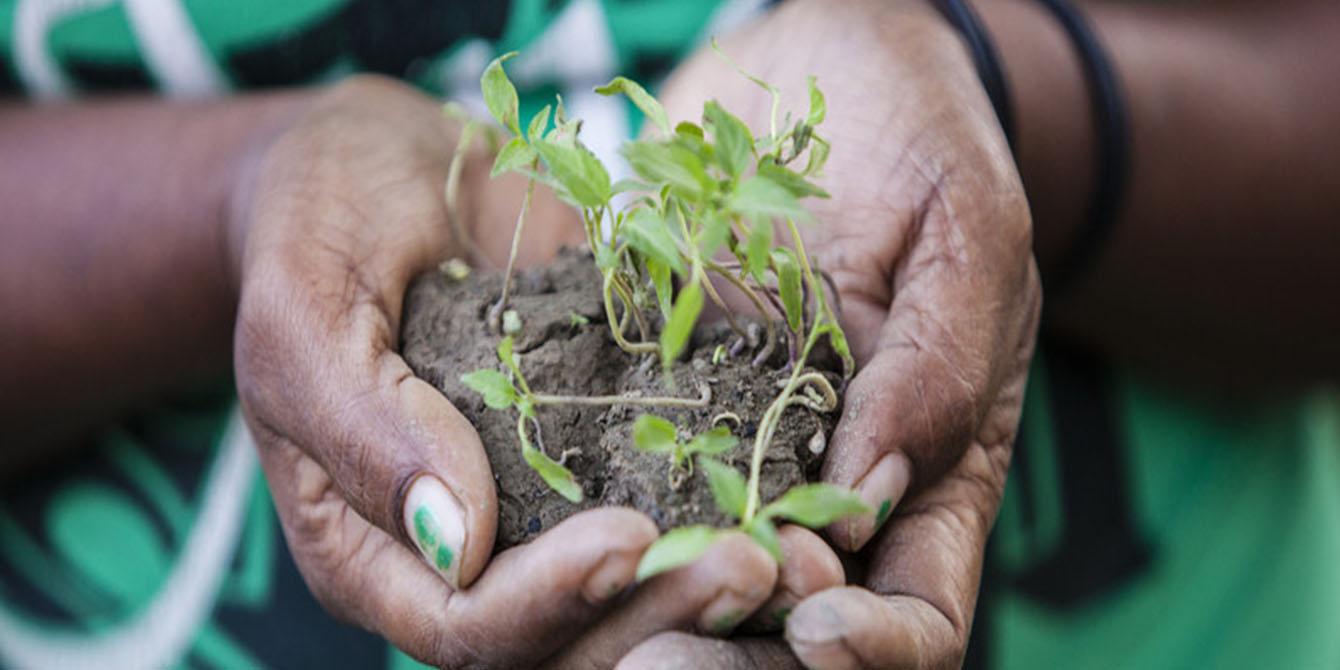 Oxfam in Asia - Timor Leste - Disaster Risk Reduction