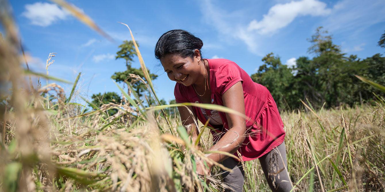 Oxfam in Asia - Timor Leste - Land Inclusive Development