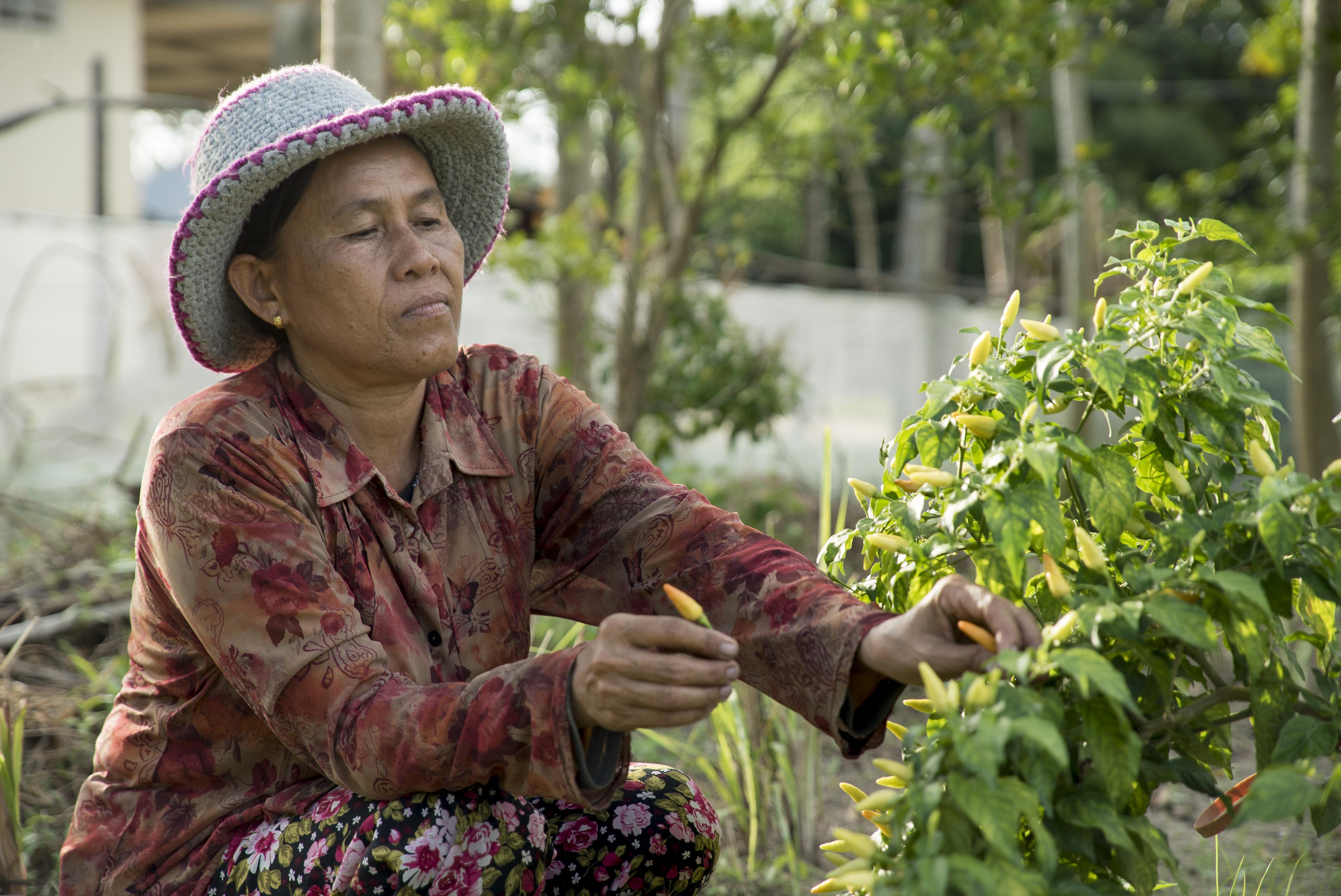 Innovative farming, women-led agriculture service team