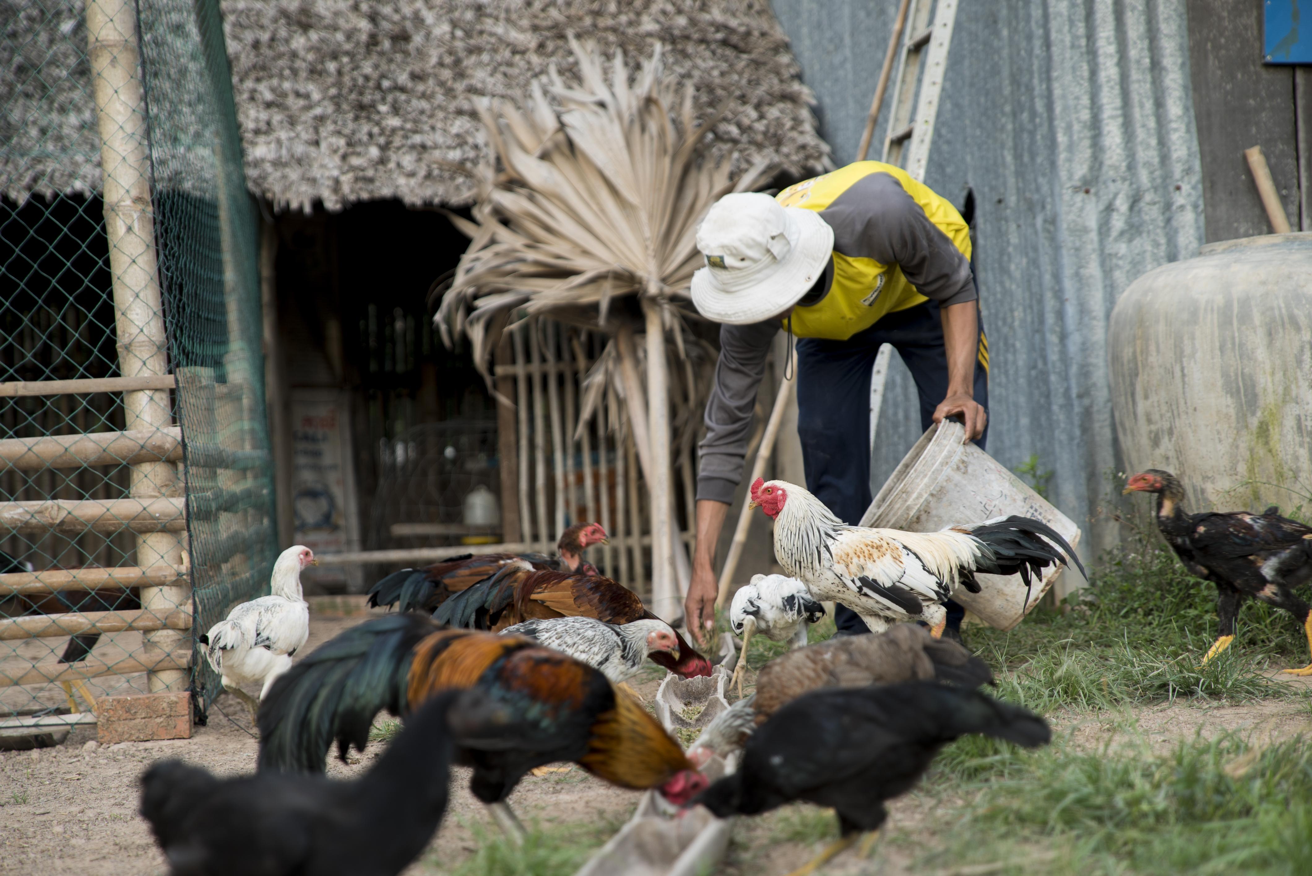 Innovative farming, climate change