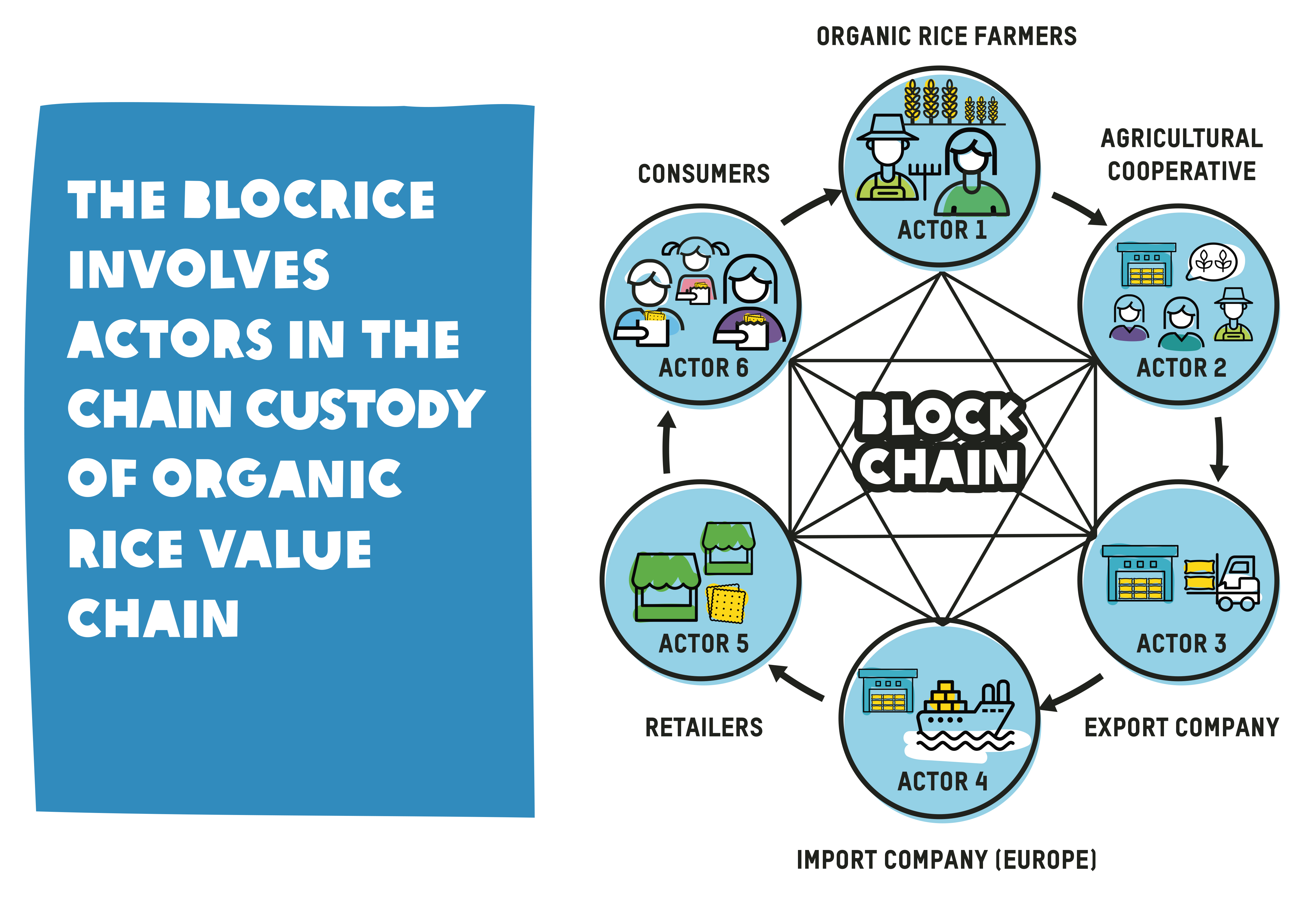 BlocRice involes active in chain custody of organic rice value chain
