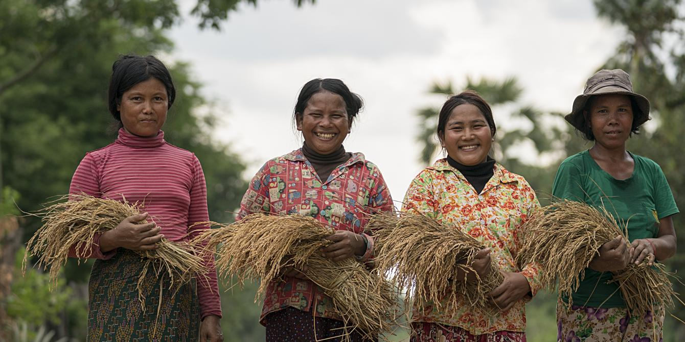 Cambodian Rice Farmers Turn to Blockchain to Gain Pricing Power