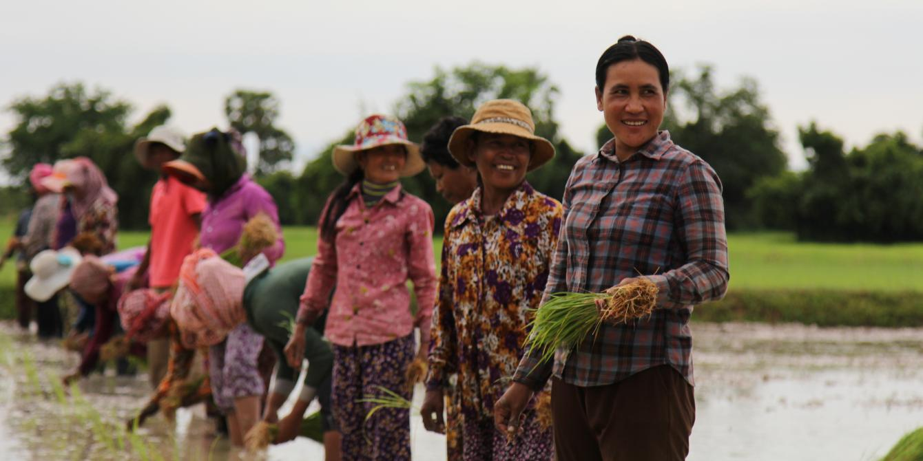 Women-Led Agriculture Service Team (WLAS)