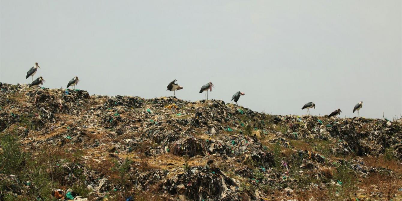 Dandora dumpsite. Photo Credit: Jeremy Mutiso