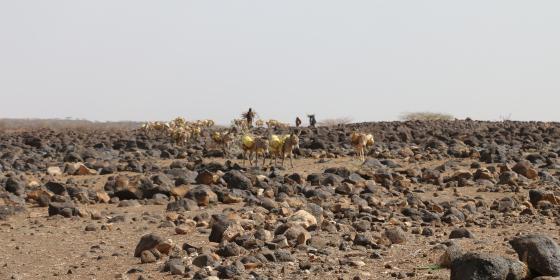 Drought Striken Marsabit County. Photo Credit; Blandina Bobson