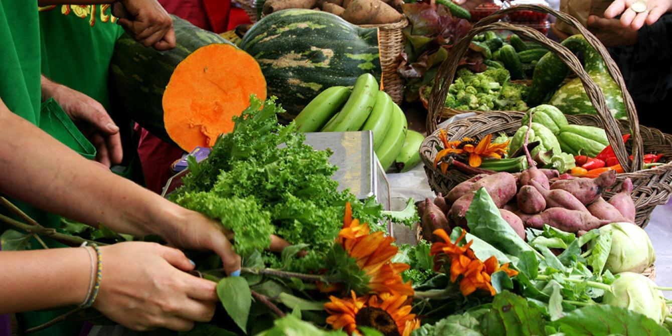 Verduras. Crédito foto: Camille Dehu