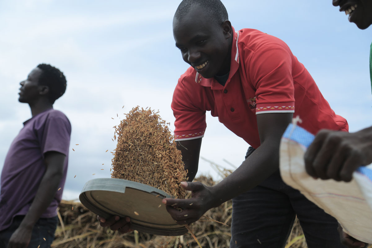 A proud rice farmer Edward working at his farm. Photo: Bill Marwa/Oxfam