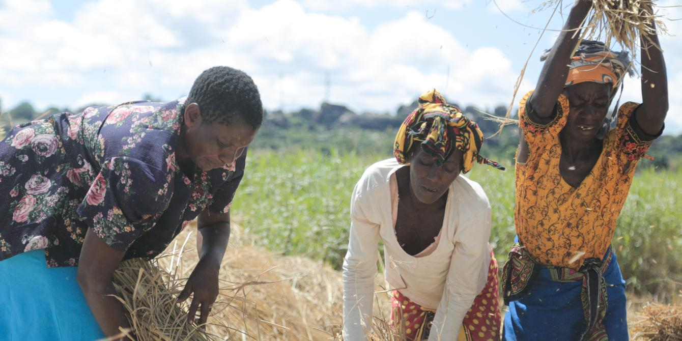 Leveraging Cost in Land Titling - Briefing Paper - Oxfam in Tanzania