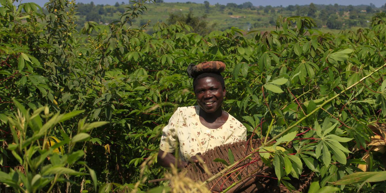 An Oxfam supported cassava farmer.Photo credit: James Akena
