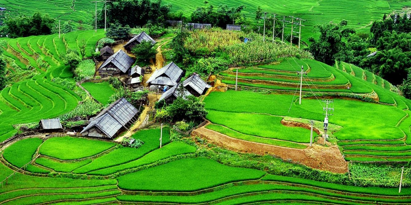 Rice paddies in northern Vietnam. Credit: Oxfam Vietnam