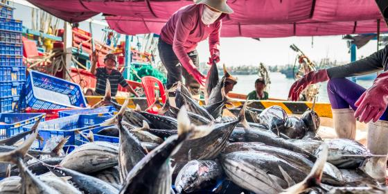 A fisherwoman at work in the Mekong Delta. Credit: Oxfam Vietnam